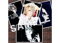 Photo Set A / KAMIJO
