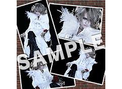 Photo Set D / KAMIJO