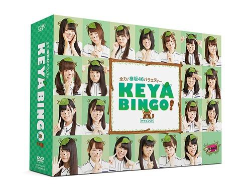 Zenryoku! Keyakizaka46 Variety KEYABINGO! / Variety (Keyakizaka46)