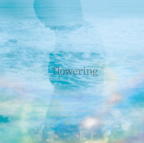 TK from Ling tosite sigure - flowering [single]