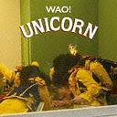Wao! / UNICORN