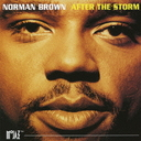 After The Storm +1 [Limited Release]