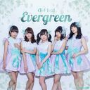 Evergreen / Clef Leaf