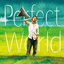 Perfect World / Mash