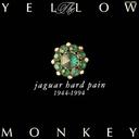JAGUAR HARD PAIN / THE YELLOW MONKEY