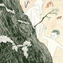 Casrnation Tribute Album Nande Kimi wa Bokuyori Boku no Koto Kuwashino? / V.A.
