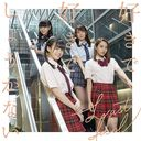Sukide Sukide Shoganai (Type E) [CD+DVD]