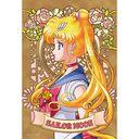 Jigsaw 300Piece Sailor Moon Crystal 300-963 SAILOR MOON /
