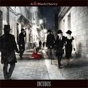 INCUBUS / Acid Black Cherry