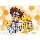 """Digimon Adventure Clear File 2 Sheets Set """"Taichi (Tai Kamiya) & Hikari (Kari Kamiya)"""" /"""