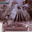 Royal Scam [Cardboard Sleeve] / Steely Dan