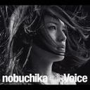 Voice / Eri Nobuchika