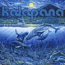 BLUE ALBUM / Kalapana