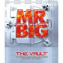 The VAULT 25 Shunen Kinen Official Archive Box / MR.BIG