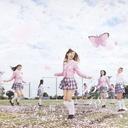 Sakura no Ki ni Naro [Ltd. CD+DVD Type B]