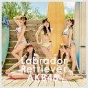 Labrador Retriever (Type B) (Ltd. Edition) [CD+DVD]