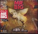 What If... [Regular-Priced Edition]/MR.BIG