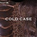 Cold Case / vistlip