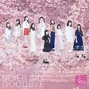 Never Say Goodbye - arigatou / Rev.from DVL