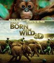 IMAX: BORN TO BE WILD 3D [Blu-ray]
