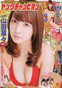 Young champion / Akita Shoten