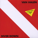 Diver Down [Cardboard Sleeve (mini LP)] [Priced-down Reissue] [Limited Release]
