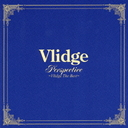 Perspective - Vlidge The Best / Vlidge