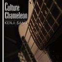Culture Chameleon / Kenji Sano