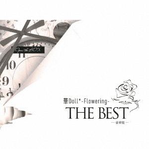 Hana Doll * - Flowering -The Best / Anthos*