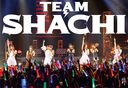 TEAM SHACHI / TEAM SHACHI