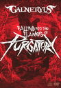 Falling Into The Flames Of Purgatory / GALNERYUS
