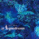 Aquadream / Takako Hina