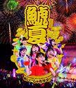 "Team Shachihoko Summer Festival 2013 - Ryakushite ""Shachisama"" / Team Shachihoko"